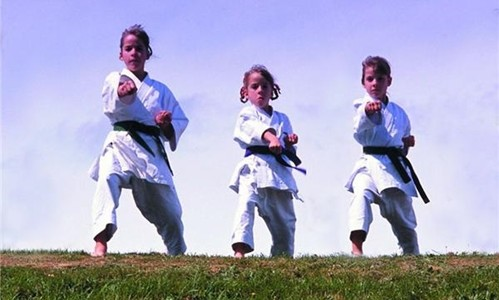Martial arts training builds strength and confidence